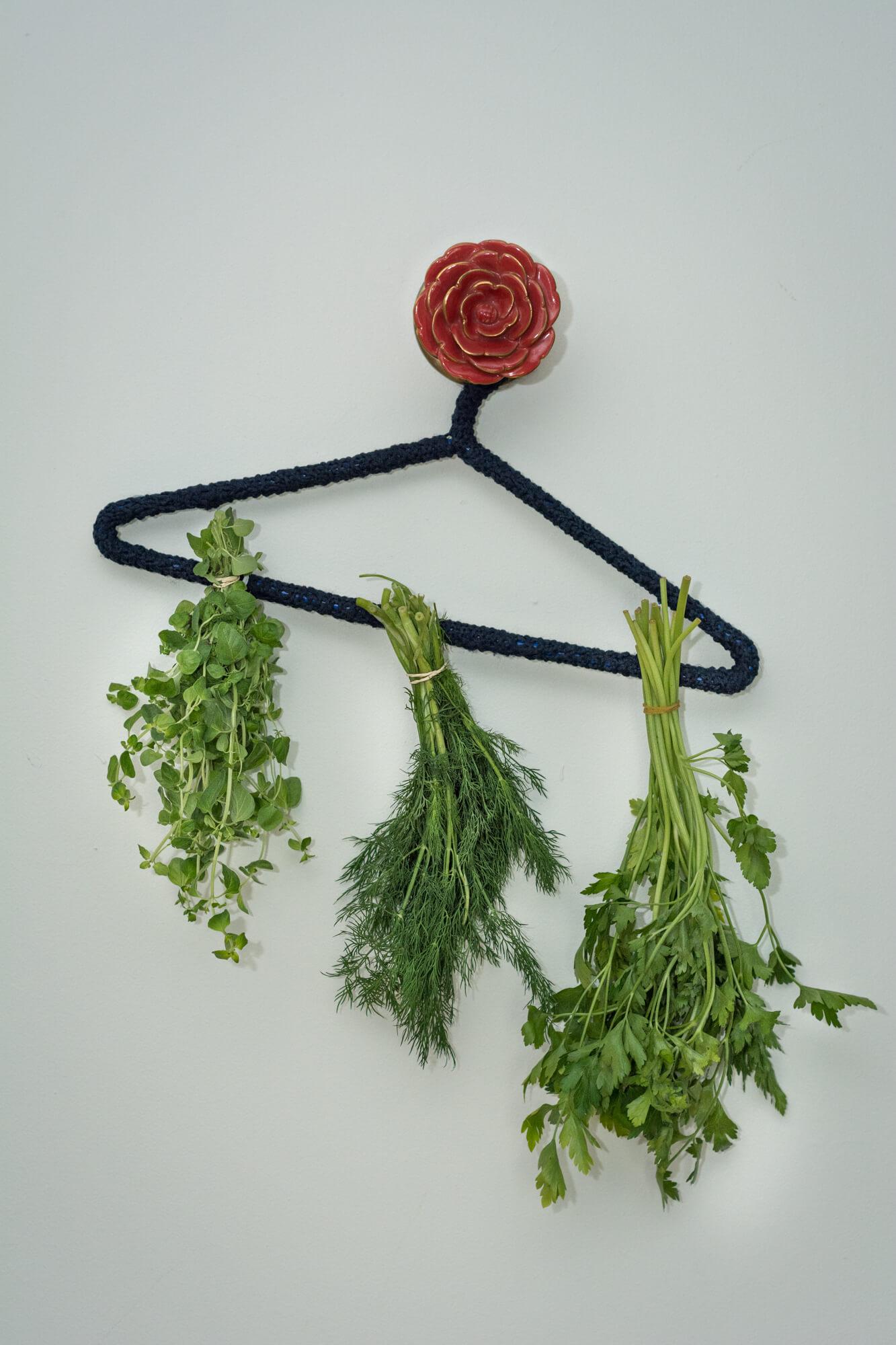 Faire sécher les fines herbes